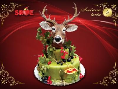 svecana-torta-03