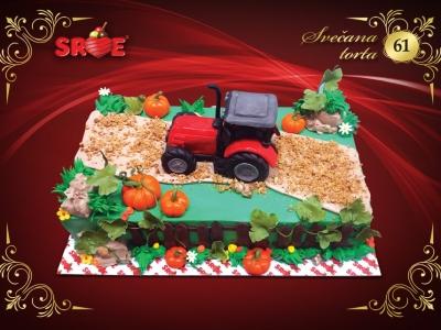 svecana-torta-61